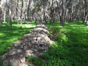 mura di fortificazione